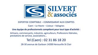 Logo SILVERT et associés